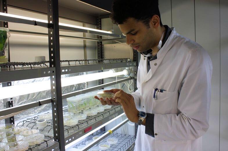 Student mit Probe in der Klimakammer des Mikrobiologie-Labors der Uni Hamburg