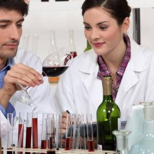 Analytical chemists in wine lab