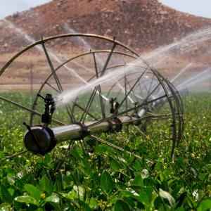 Sustainable Water Use In Agriculture
