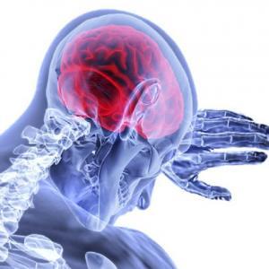 Ultrapure water using in anti-viral drug brain study