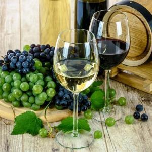 Wine Analysis HPLC