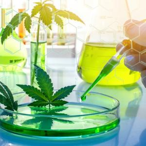 Scientific Cannabis