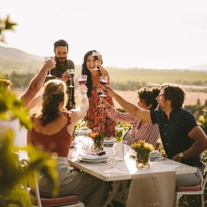 Group of people toasting wine during a dinner party.