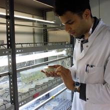 Botanische und mikrobiologische Forschung an der Universität Hamburg